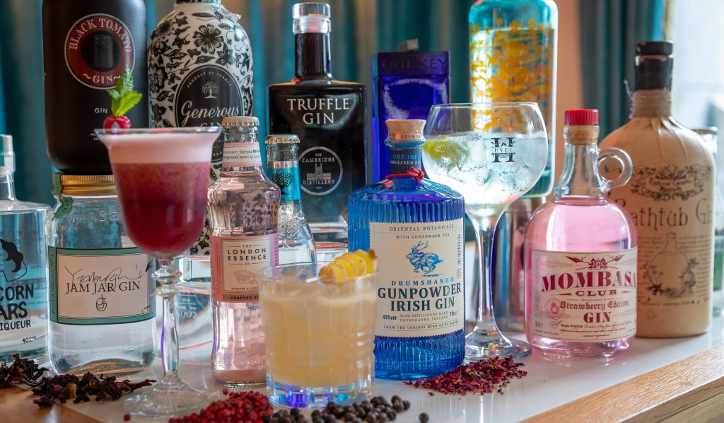 Gins at Hyde Bar & Gin Parlour at The Forster Court Hotel - part of The Connacht Hospitality Group